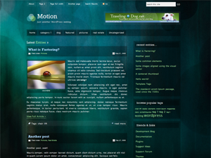Motion Theme